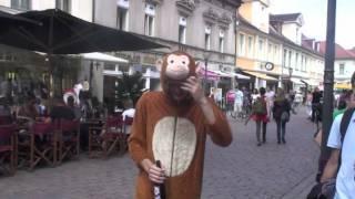 Affe im Affenkostüm - Bonusvideo
