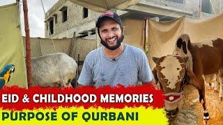 EID & childhood memories   purpose of qurbani   Shahid Afridi