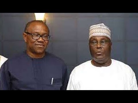 South-West Leaders Caution Igbo Leaders Over Peter Obi