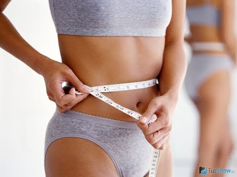 Бесплатная диета для сжигания жиров