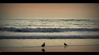 Liên Khúc Mưa Trên Biển Vắng - Ngọc Lan