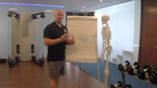 Core Stability 2: The role of the abdominal wall