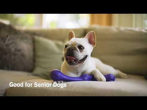WEST PAW Игрушка для собак Zwig Video #1