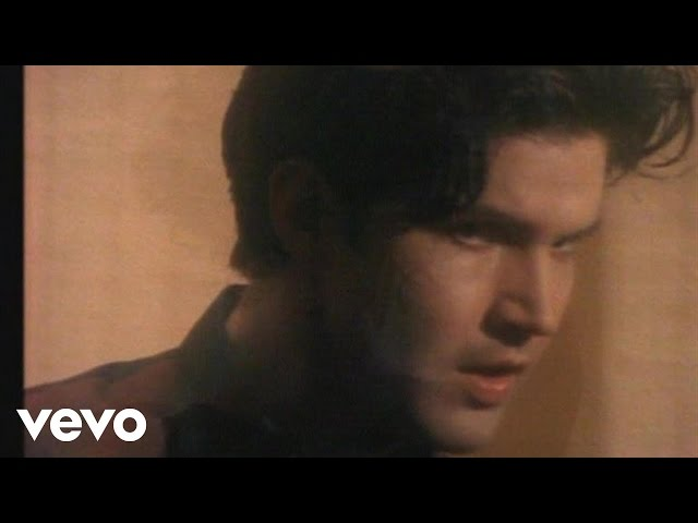 From The Hip - Lloyd Cole & The Commotions