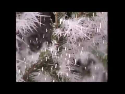 Rolf Zuckowski - Es schneit