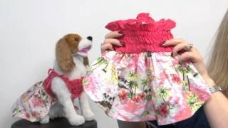 Casual Canine Hawaiian Breeze Dog Dress