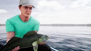 VideoImage1 Fishing Sim World®: Pro Tour - Lake Dylan