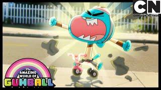 Darwin Finds A New Best Friend | The Third | Gumball | Cartoon Network