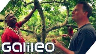 Der Fruithunter | Galileo | ProSieben