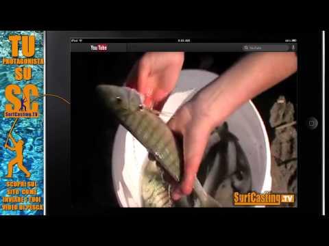 A in pesca totale di picca video