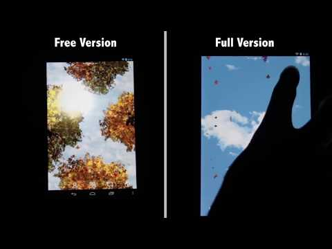 Video of Falling Leaves Free Wallpaper