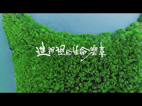 進與退的生命樂章:台江濕地生態影片.jpg