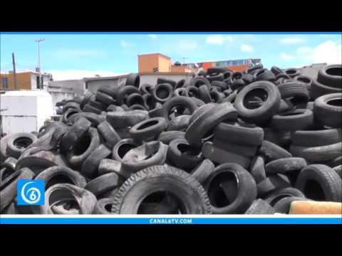 Continúa la recolección de llantas por parte de la dirección de residuos sólidos