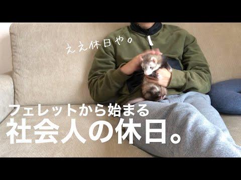 , title : 'フェレットから始まる社会人の日曜ルーティン【赤ちゃん】