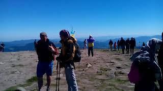 Вид Карпат с вершины горы Говерла