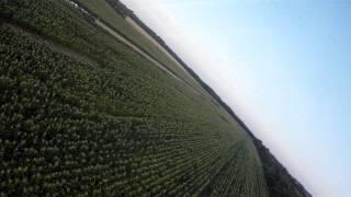 preview picture of video 'Štakorovec pista 16.07.2011'