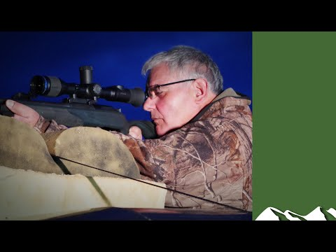 , title : 'Foxshooter protects sheep and pheasants