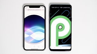 iOS vs Android P: Should Apple Fans Be Jealous?