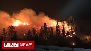 Kolorado walczy z rekordowym pożarem – BBC News-wiadomosc w j.angielskim