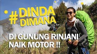 Di Gunung Rinjani Naik Motor! #DindaDimana