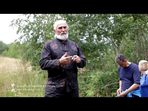 Горячавка и наперстянка - лекция о лечебных травах