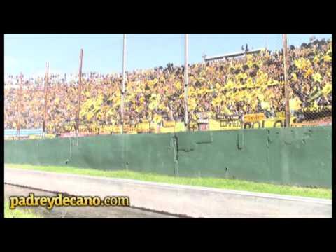 """""""Así lo vivió la hinchada - Peñarol Campeón Apertura 2015"""" Barra: Barra Amsterdam • Club: Peñarol"""