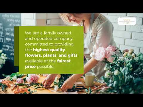 Videos from Orchid Florist