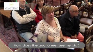 How to buy at Willingham Auctions
