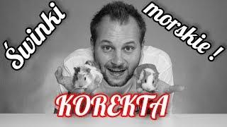 KOREKTA FILMU O ŚWINKACH MORSKICH !
