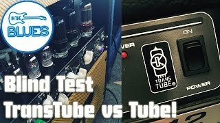 Real Tubes versus Peavey TransTube Blind Test - In The Blues
