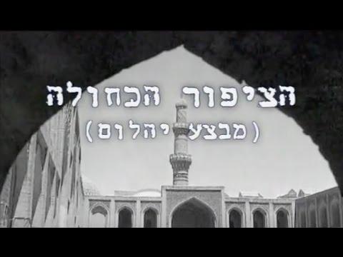 סרטון מרתק המספר את סיפורו של מבצע יהלום ('הציפור הכחולה')