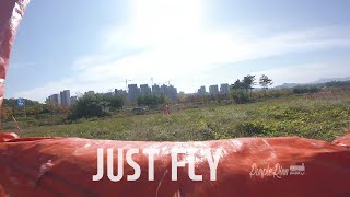 JUST FLY | Rest in sky???? | Uncut | Purplerinn FPV | 퍼플린