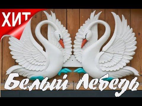 Белый лебедь - Гр.Станция Люга (Студия Шура) клипы шансон лучшее