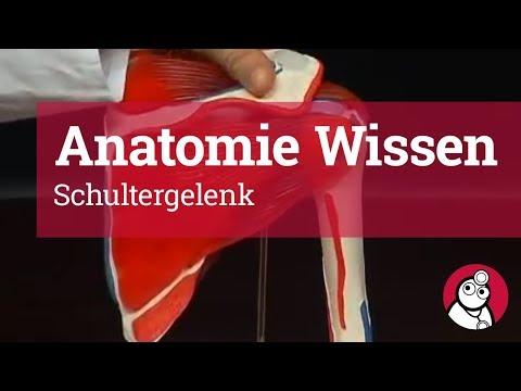 Salben und Reiben an Osteochondrose
