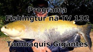 Programa Fishingtur na TV 132 - Pesqueiro Córrego das Antas