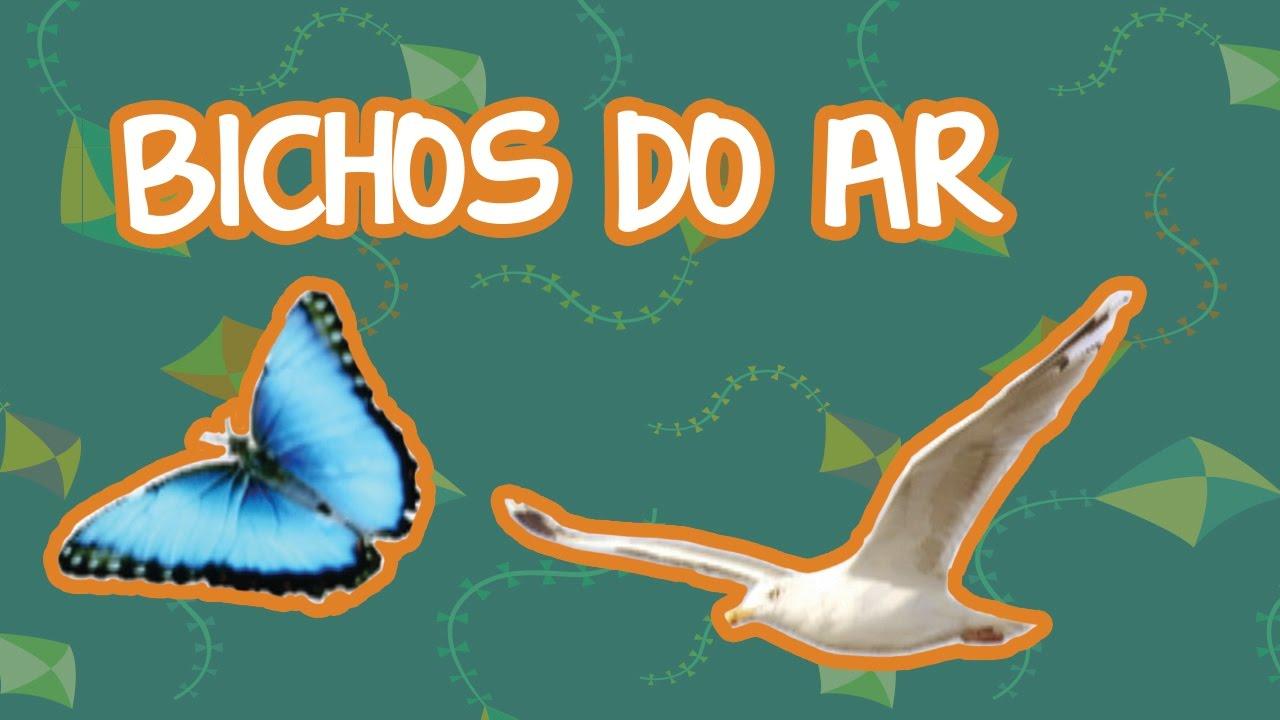 BICHOS DO AR | BEBÊ MAIS BICHOS 2