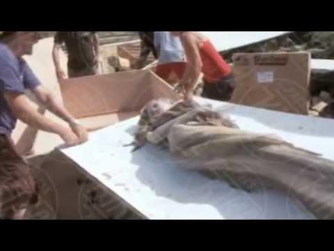 La verità sulla Sirena ritrovata a Lampedusa