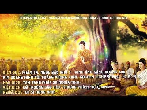Phẩm 14. Ngọc Báu Như Ý - Kinh Ánh Sáng Hoàng Kim
