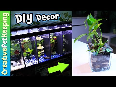 BETTA FISH tank decorations | DIY Aquarium Plant Planters