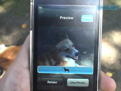 Bow Cam iPhone App: Barks to Get Pup Attention for the Photo