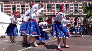 Traditional Ukrainian Dance - Danetzare in Erfurt