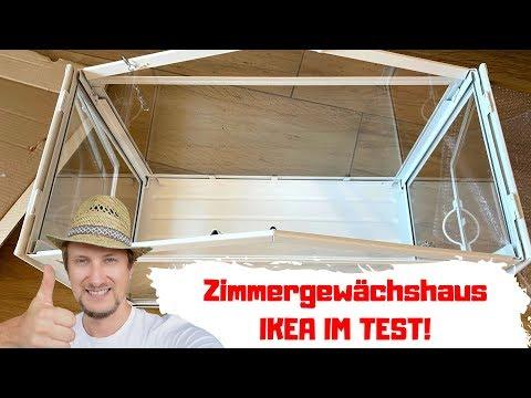 Zimmergewächshaus Ikea - Erfahrung & Aufbau - Lohnt sich der Kauf?