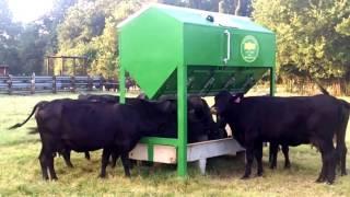 Solar Livestock Feeder  Watch This!