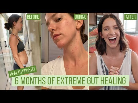 , title : '6 Months of Extreme GUT HEALING: What I did | Health Update | What's Next
