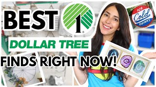 BEST DOLLAR TREE PRODUCTS TO LOOK OUT FOR RIGHT NOW 2021