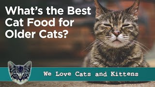Best Cat Food for Older Cats - Reviews and Guide