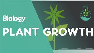 CH06-PLANTS – GROWTH AND MOVEMENTS-PART02-PLANT GROWTH HORMONES01