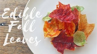 Fall Leaves Dessert: Food Plating And Design