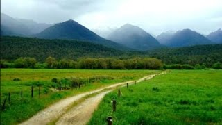 اغاني طرب MP3 تفسير حلم ارض خضراء او زراعية في المنام تحميل MP3