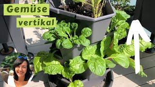 Gemüse vertikal anbauen   Säulentopf, Pflanzturm - nicht nur eine tolle Idee für kleine Balkone